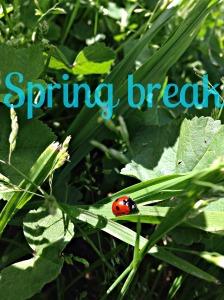 Spring Break by Maddy Heeszel